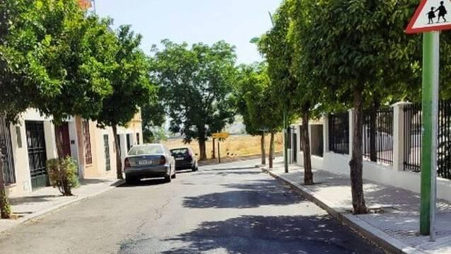 El Campo de la Verdad apremia a Vimcorsa a que haga público el estudio sobre la rehabilitación del barrio