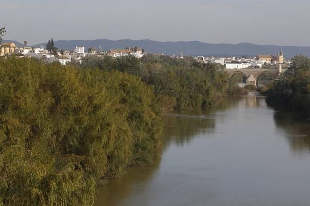 El Guadalquivir en Córdoba, a la espera de una limpieza y mantenimiento