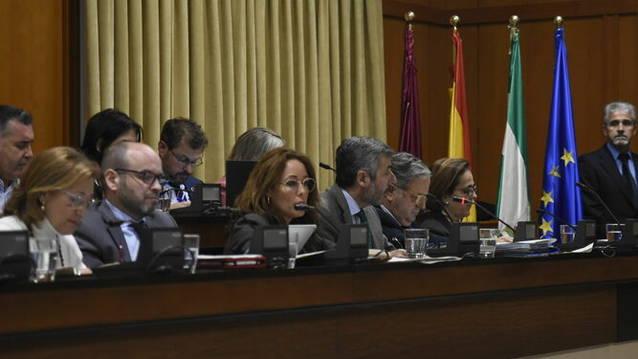 El Movimiento Ciudadano critica que el Ayuntamiento duplique los préstamos en las cuentas de 2020