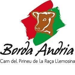 BORDA ANDRÍA