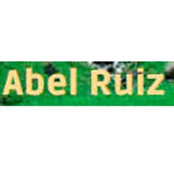ABEL RUIZ PUYOL