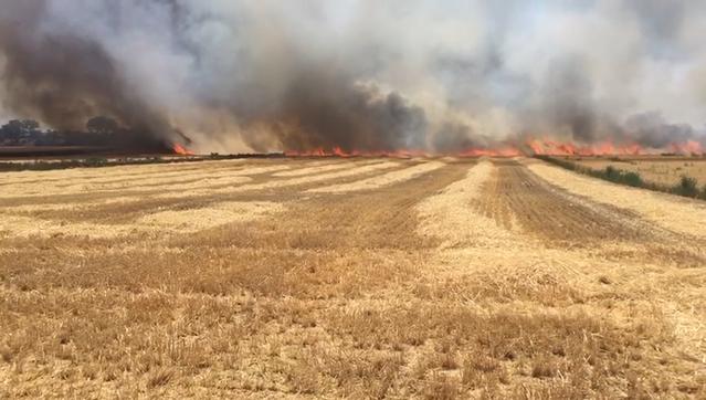 Dos nous incendis a la Segarra