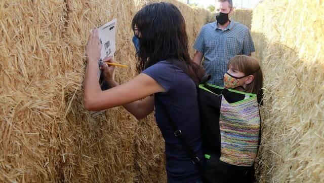 Joves de Sant Ramon organitzen un laberint de palla al municipi