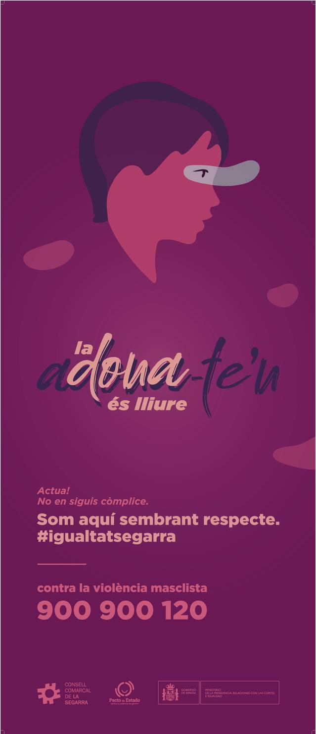 La Segarra rep més de 18.000 euros per lluitar contra la violència de gènere