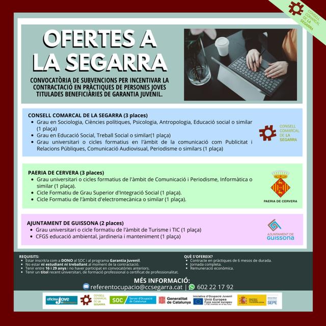 L'Oficina Jove de la Segarra obre 12 places de treball per a joves