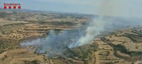 Onze dotacions de Bombers treballen en l'incendi d'un camp d'oliveres a Cervera