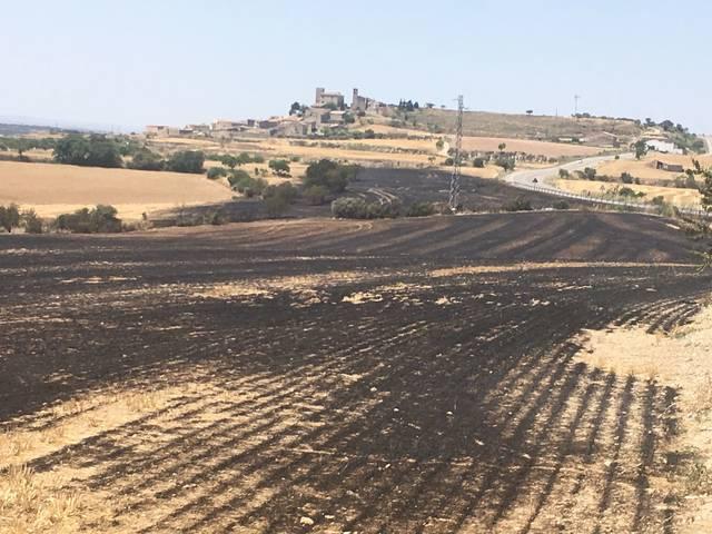 Un incendi a Cervera crema 8,4 hectàrees