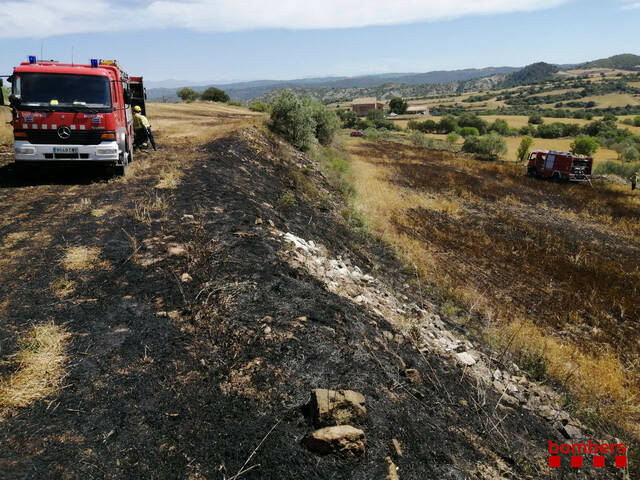 Un incendi crema 2 hectàrees de cereal a Palouet