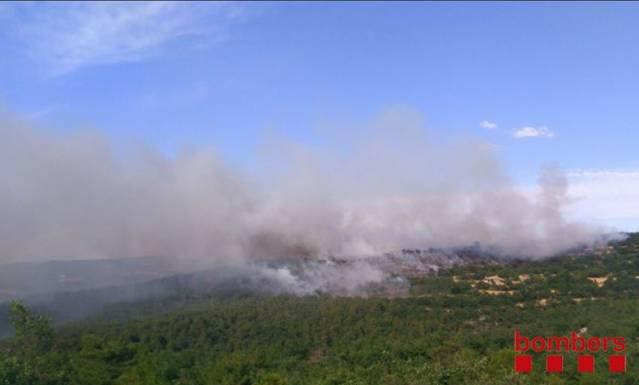 Un incendi crema 15,9 hectàrees a Biosca