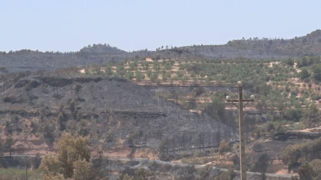 Els Bombers donen per controlat l'incendi de la Ribera d'Ebre
