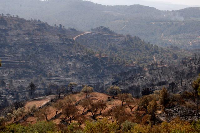 Estabilitzat l'incendi de la Ribera d'Ebre