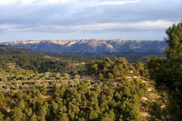 La Fundació Món Rural impulsa un estudi per posar en valor i promocionar el patrimoni agrari de les Garrigues