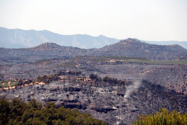 L'Ajuntament de Bovera convoca els afectats per l'incendi perquè facin una primera prospecció de les finques cremades