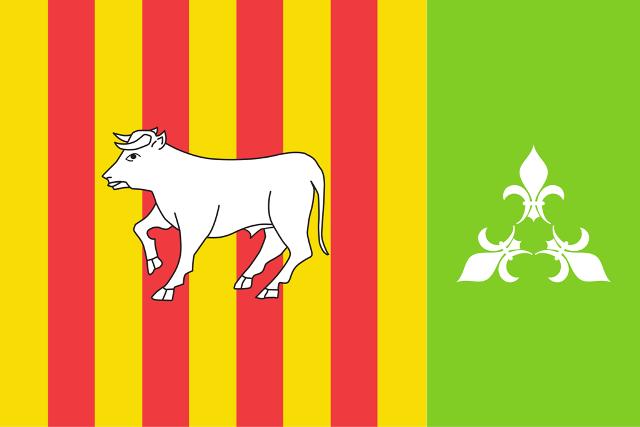 Les Borges escull amb un 64,43% dels vots la nova bandera