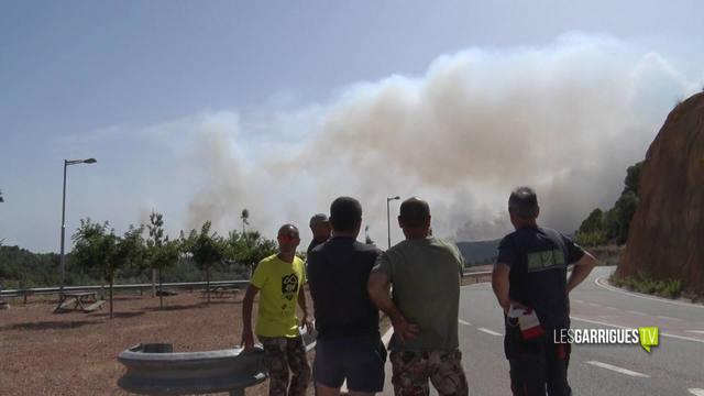 Pagesos afectats pel foc de la Ribera d'Ebre considerent insuficients les mesures d'Agricultura