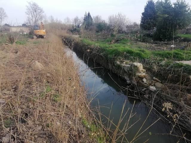 Queixes per les obres a la Femosa al reduir la vegetació de ribera