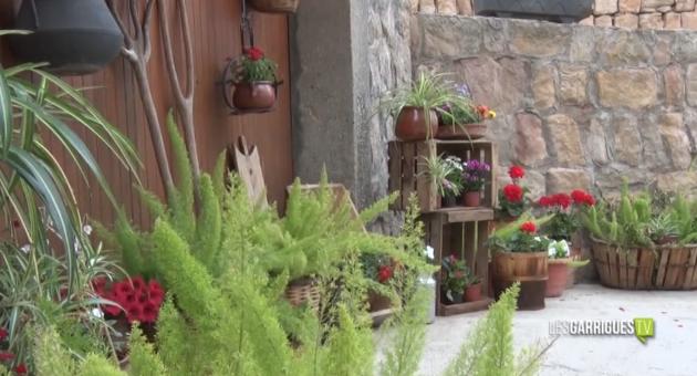 Tot a punt a la comarca per les Garrigues en Flor