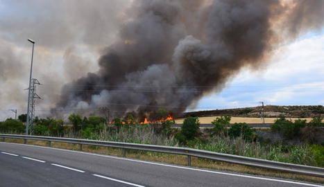 Un incendi crema vuit hectàrees a la Floresta
