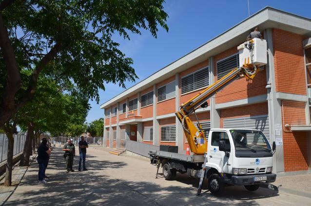 Detecten una colònia de ratpenats a l'escola Pompeu Fabra de Mollerussa