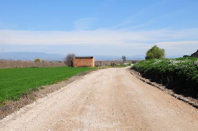 El Palau d'Anglesola arranja els camins municipals
