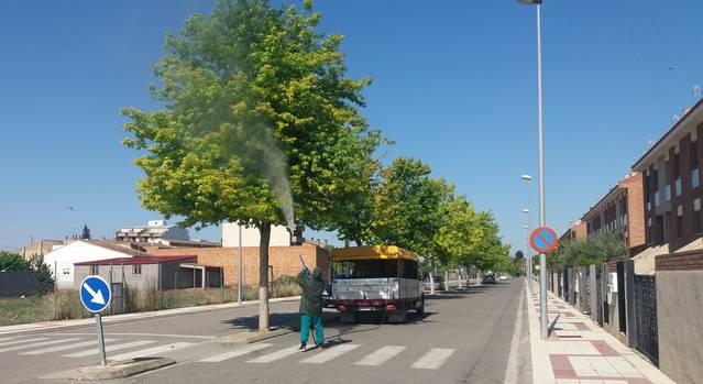 L'Ajuntament de Mollerussa inicia un tractament preventiu a les zones verdes contra el pugó, l'assecada i la cotxinilla