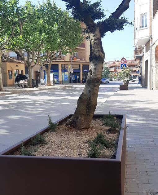 Agramunt renova el mobilitari urbà de diferents carrers