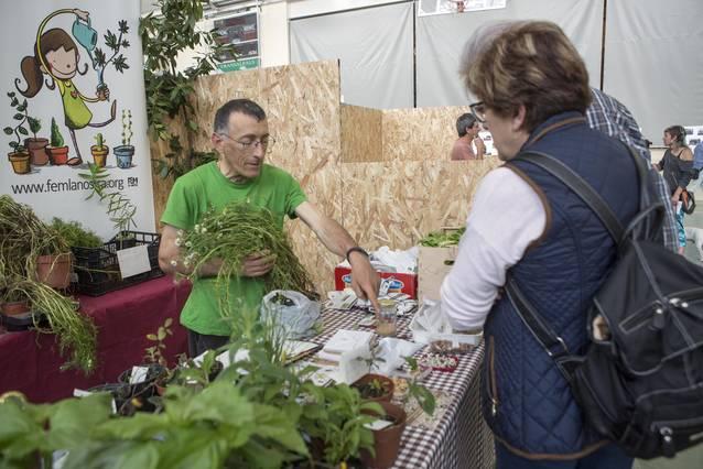 Finalitza amb èxit la primera fira d'horticultura de Castellserà
