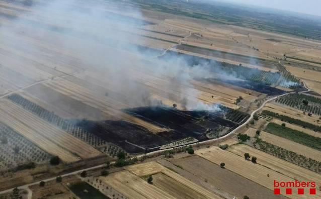 Incendi de vegetació agrícola a Belianes