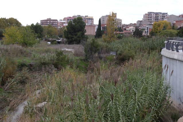 L'Ajuntament de Tàrrega adjudica els treballs per convertir la riba de l'Ondara vora el Parc Esportiu en espai de passeig
