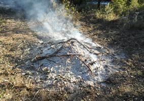 A partir de demà, comença la prohibició de fer foc al bosc