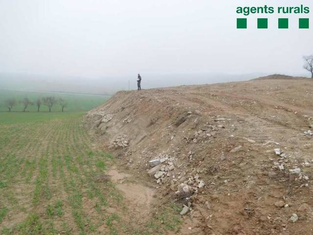 Denúncia a Artesa de Segre per una tala forestal sense autorització