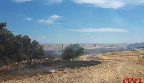 Els bombers sufoquen un incendi agrícola a Castelló de Farfanya