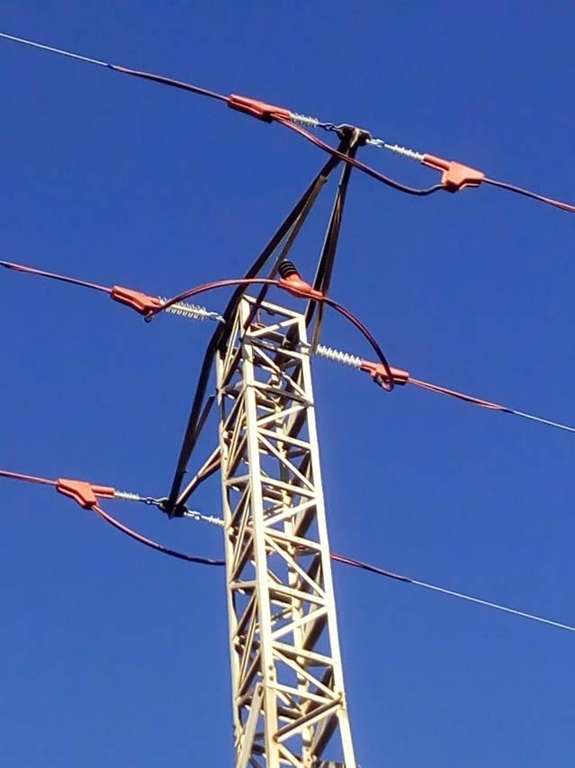 Endesa instal·la proteccions per a l'avifauna a una línia elèctrica a la Noguera