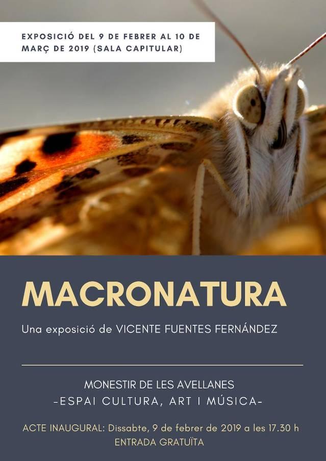 """Exposició """"Macronatura"""" al Monestir de les Avellanes"""