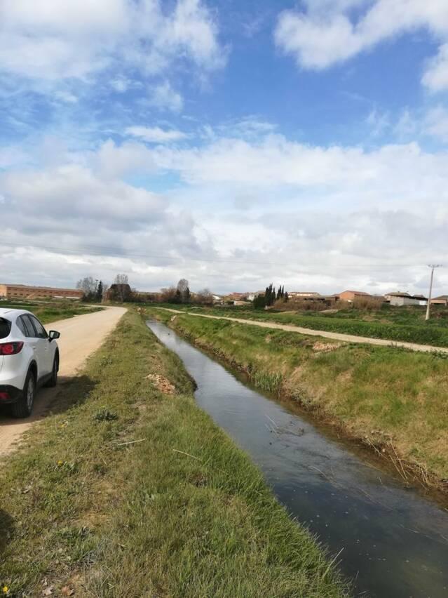 La Diputació plantarà 100 arbres a la 2a sèquia del canal d'Urgell al seu pas per Vallfogona de Balaguer