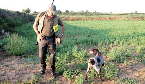 Les comarques de Lleida obren la mitja veda de caça