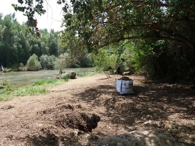 Neteja i arranjament de la zona de l'aiguabarreig Farfanya-Segre