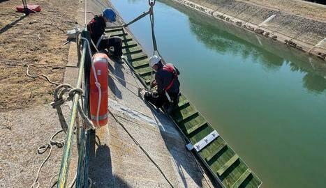Rampa per evitar que morin cabirols al canal