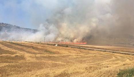 Un incendi a Foradada crema 14,5 hectàrees