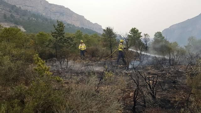Un incendi de vegetació crema 2600m2
