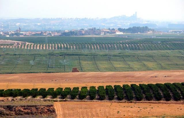 23 municipis del Segrià en alerta per la contaminació atmosfèrica