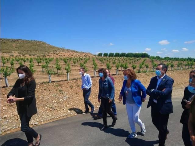 Agroseguro estima en uns 20 milions els danys de la pedregada de dimarts al Segrià