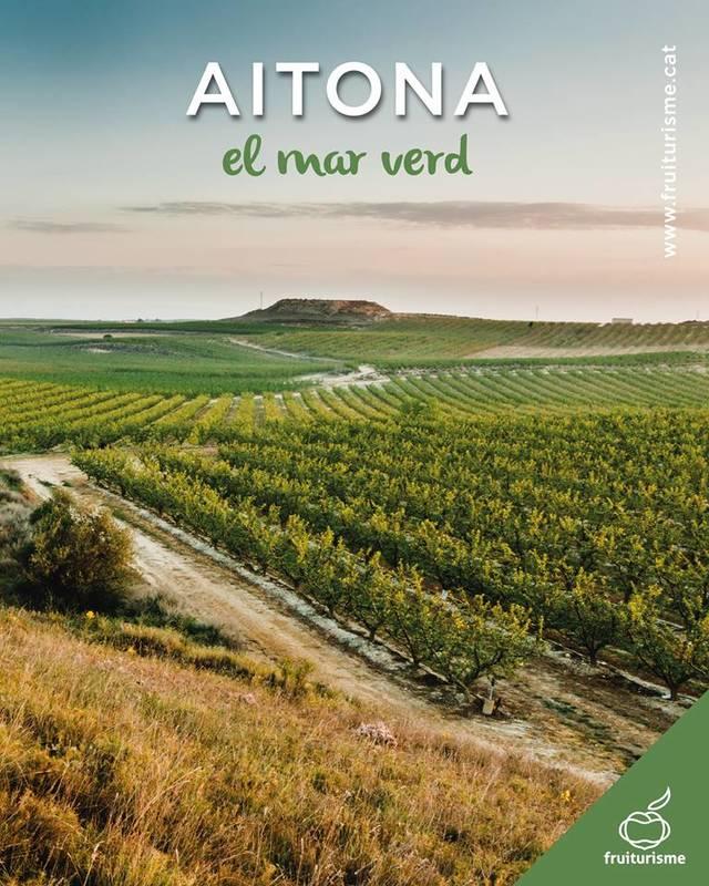 'Aitona en verd', una nova proposta turística vinculada a l'arbre fruiter