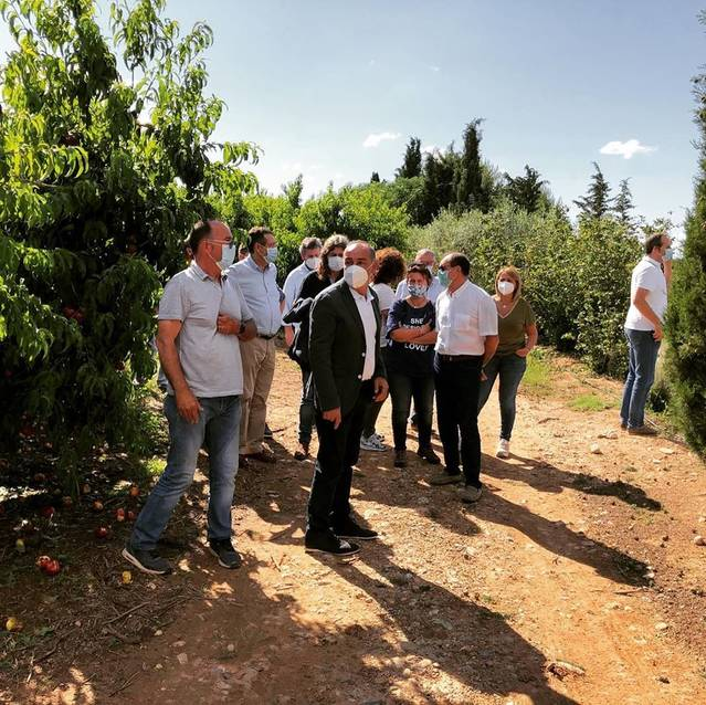 Alcarràs reclama bonificacions pels productors afectats per la pedregada de dimarts