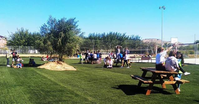 Alpicat reutilitza uns 4.000 m2 de la gespa artificial retirada del camp de futbol