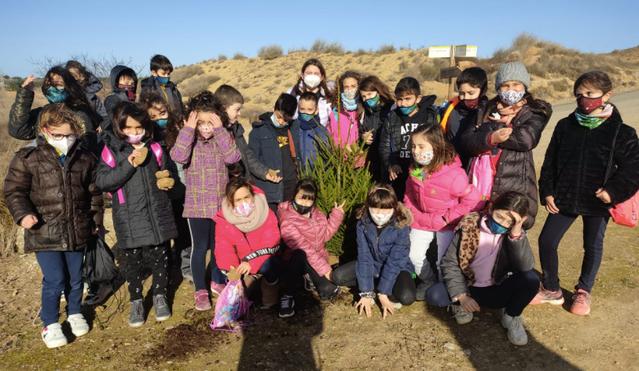 Alumnes de l'escola Doctor Serés d'Alpicat planten més avets de la campanya nadalenca
