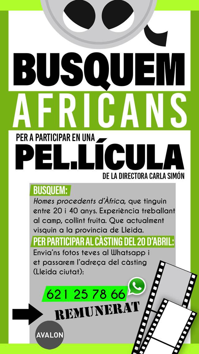 Càsting a Lleida d'homes africans amb experiència a la fruita per la nova pel·lícula de la Carla Simón