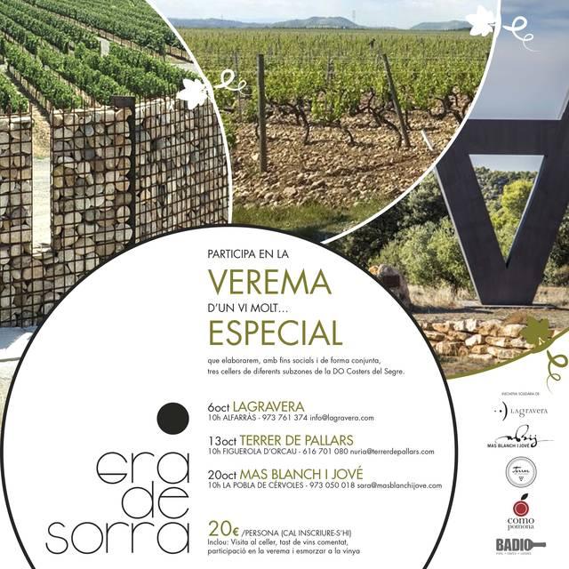Comencen les veremes col·laboratives del vi Gra de Sorra 2018