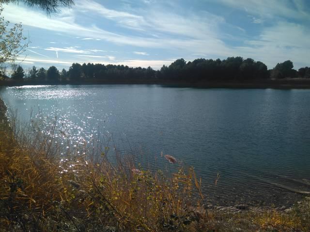 El canvi climàtic al darrere de l'aparició de l'alga giosmina a l'embassament d'aigua potable d'Almacelles