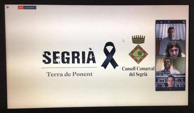 El ple del Consell Comarcal del Segrià fa un minut de silenci per les víctimes de Covid-19